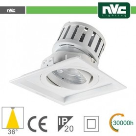 10x - Connettore Strisca LED R3528 H5050-60